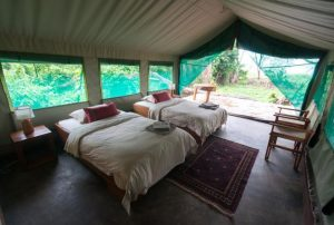 Budget / Basic Accommodation in Volcanoes National Park Rwanda