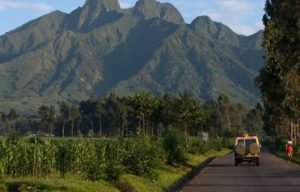 Safari Activities Done in Volcanoes National Park Rwanda